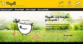 Visuel_site_internet_magalli